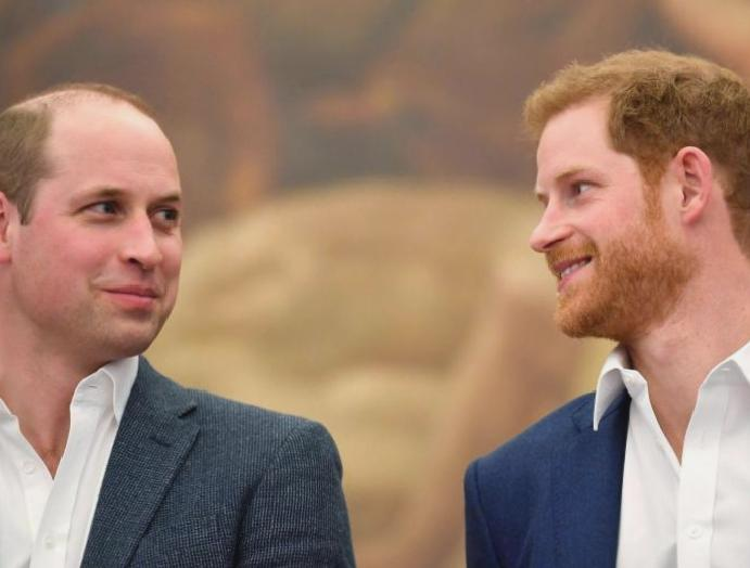 Princes William Harry 'offensive harmful'