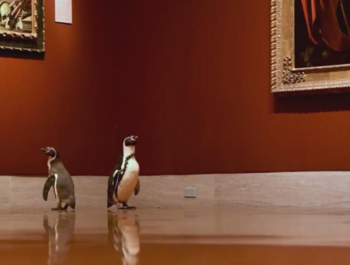 'We're seeing they're reacting art': Penguins